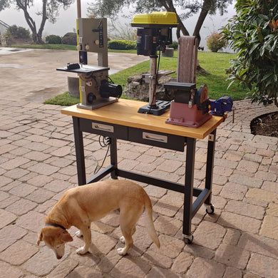 Mobile Power Tool Table