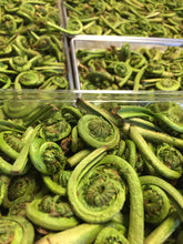 Load image into Gallery viewer, WILD FIDDLEHEADS FREEZE DRIED!