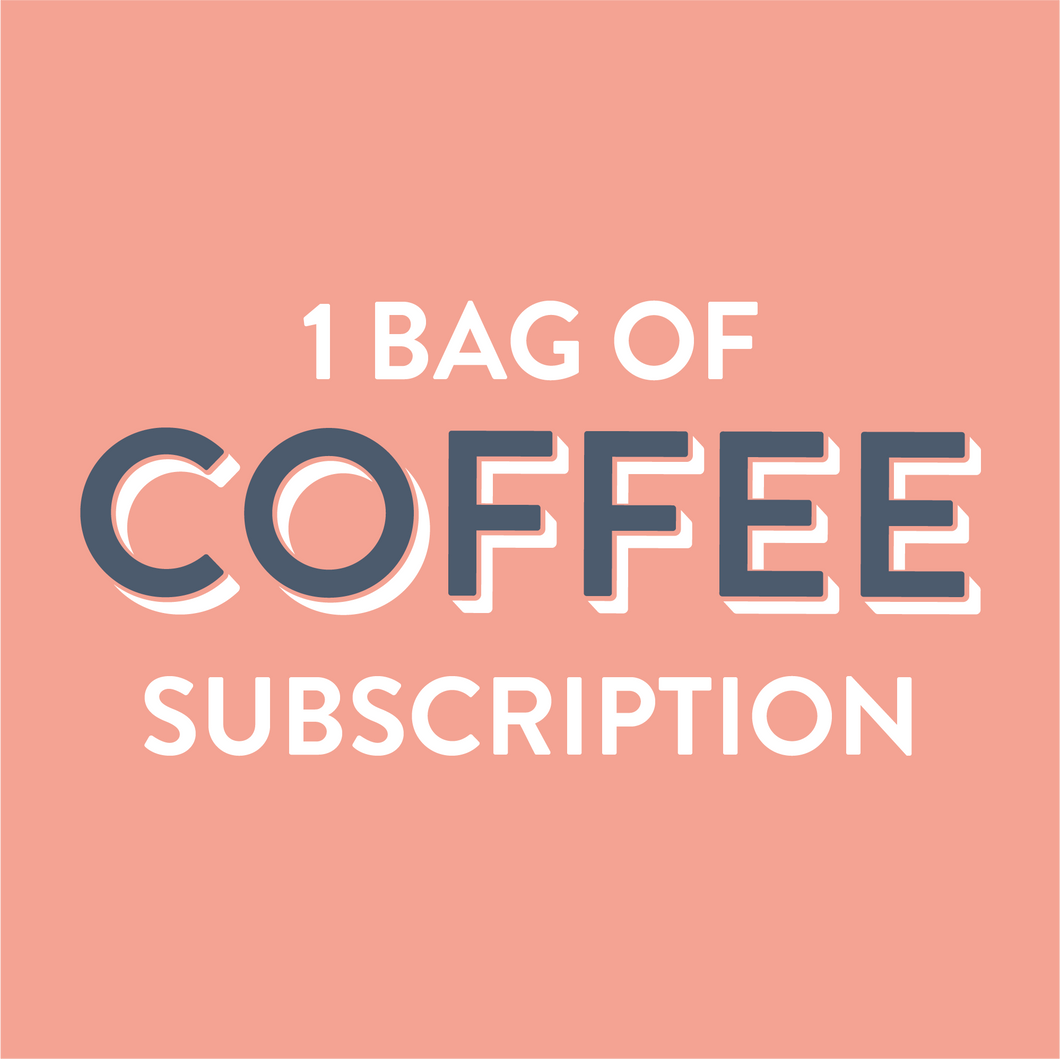 Coffee Subscription 1 Bag - Grain and Grind