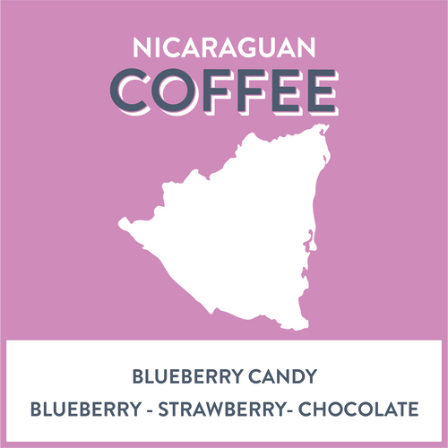 Nicaragua Blueberry Candy - Grain and Grind