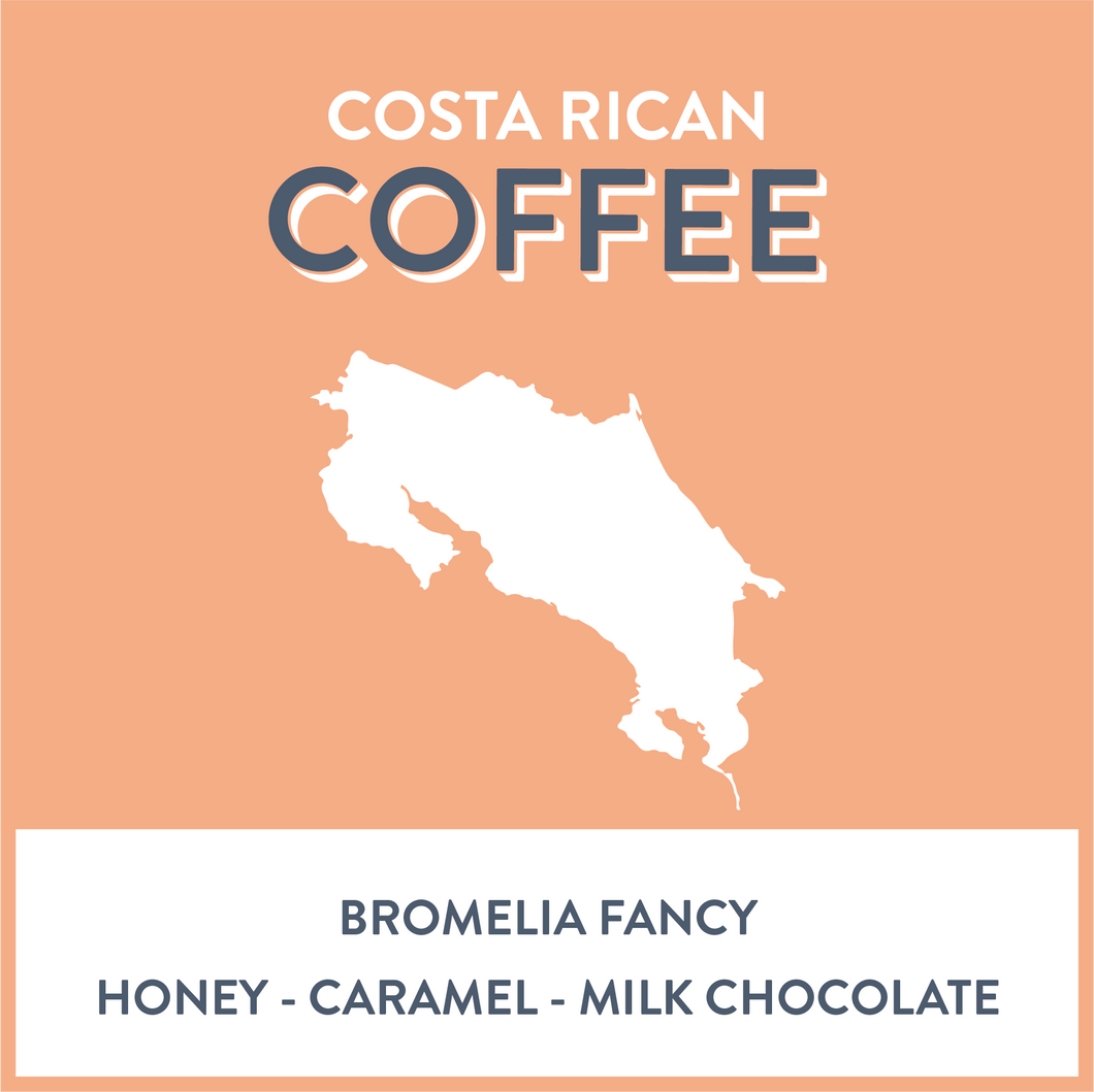 Costa Rica Bromelia Fancy - Grain and Grind