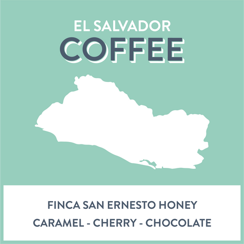 El Salvador Finca San Ernesto Honey - Grain and Grind