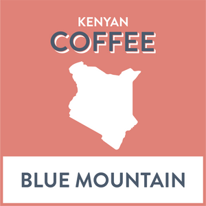 Kenya Blue Mountain - Grain and Grind