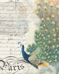Peacock Ephemera Right (Out of Stock)