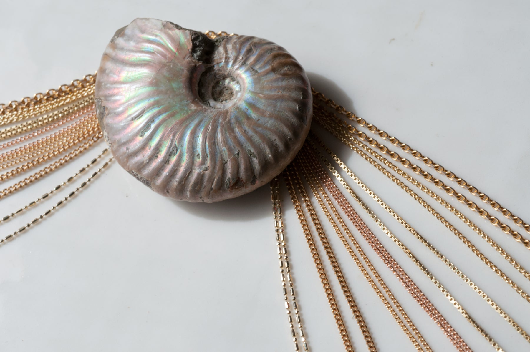 Marta Pia Chain Necklaces for Charms and Pendants a Collection with an Opalized Ammonite