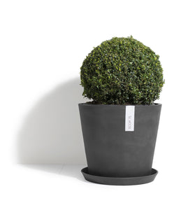 Ecopot Amsterdam Larger Pots - *Local Delivery or Local Pick Up Only*