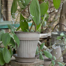 Load image into Gallery viewer, Simona Grey Plant Pots - *Local Pick Up Only*