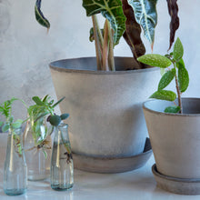 Load image into Gallery viewer, Julie Grey Plant Pots - *Local Pick Up Only*