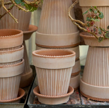 Load image into Gallery viewer, Simona Rose Plant Pots - *Local Pick Up Only*