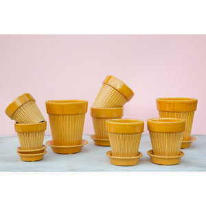 Simona Yellow Plant Pots - *Local Pick Up Only*