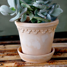 Load image into Gallery viewer, Copenhagen Rose Plant Pots - *Local Pick Up Only*