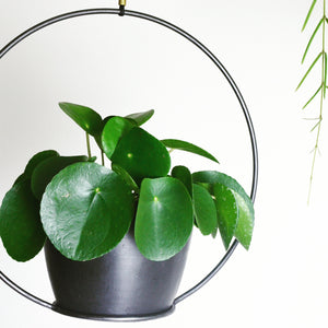 Handmade Metal Hanging Plant Hoop - *Local Delivery or Local Pick Up Only*