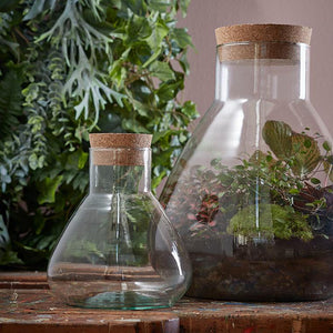 Emily Glass Terrarium - *Local Pick Up Only*