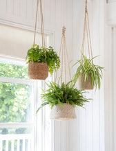 Load image into Gallery viewer, Large Tapered Hanging Plant Pot In Jute
