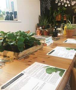 Introduction To Houseplants: How To Keep Them Happy Workshop
