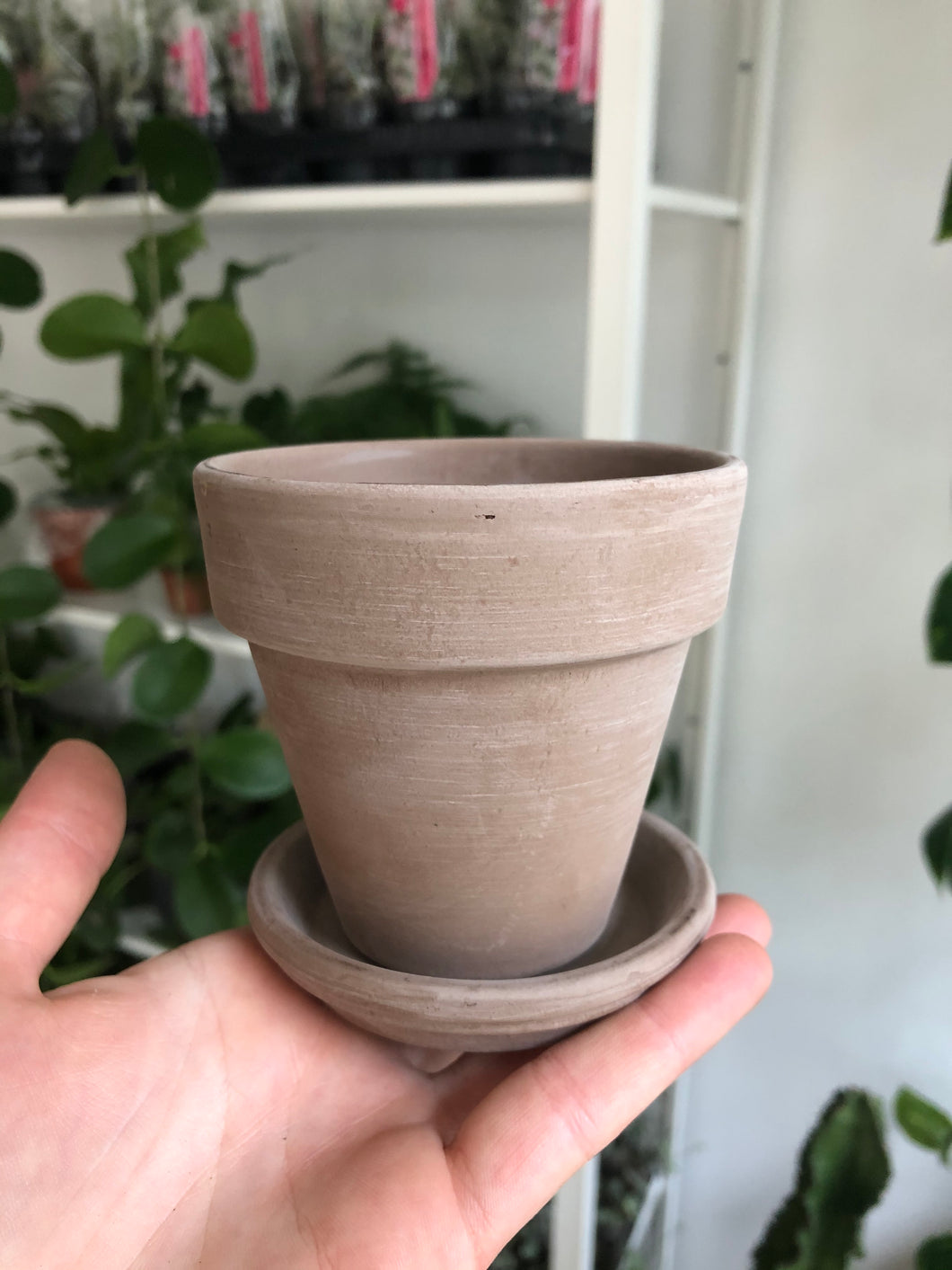 Mini 9cm Grey Terracotta Plant Pot And Saucer