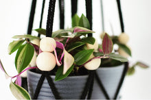 Load image into Gallery viewer, Handmade Beaded Macrame Plant Hanger