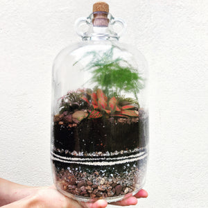 Make Your Own Sealed Terrarium Workshop