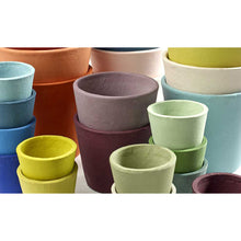 Load image into Gallery viewer, Handpainted Pots - *Local Pick Up Only*