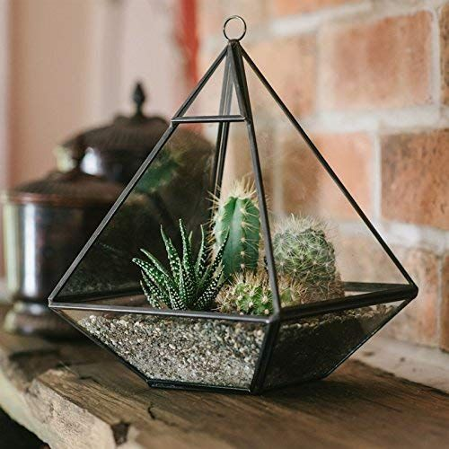 Pyramid Terrarium - *Local Pick Up Only*