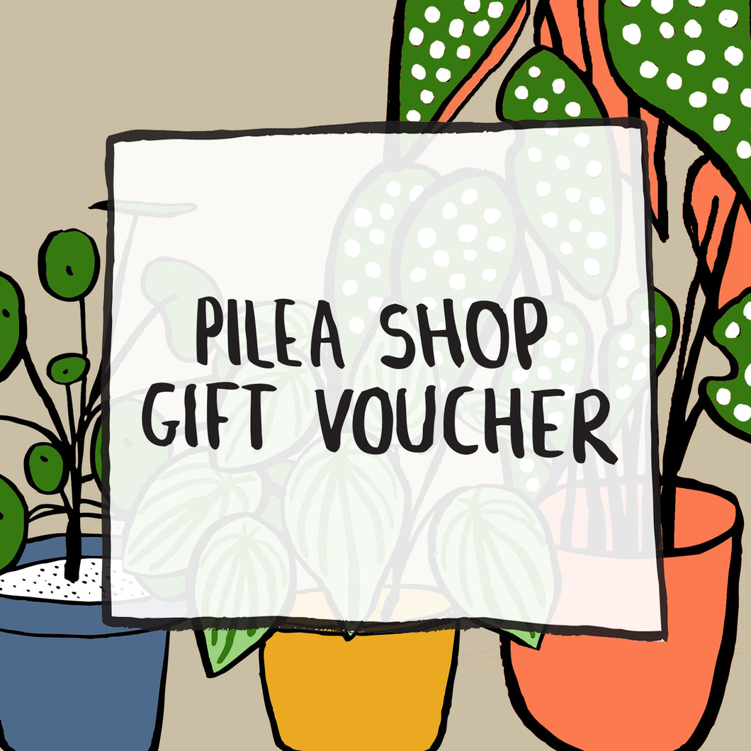 Pilea Shop Gift Voucher