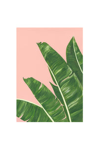Stengun Drawings Banana Plant Card