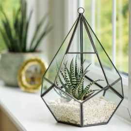 Teardrop Terrarium - *Local Pick Up Only*