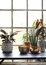 Load image into Gallery viewer, Striped Stand Plant Pots - *Local Delivery or Local Pick Up Only*