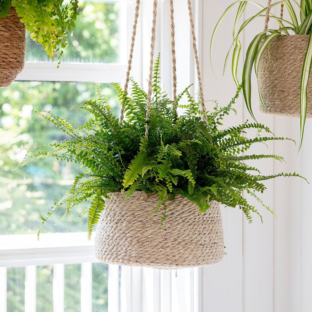 Large Tapered Hanging Plant Pot In Jute