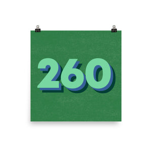 260 Area Code Poster