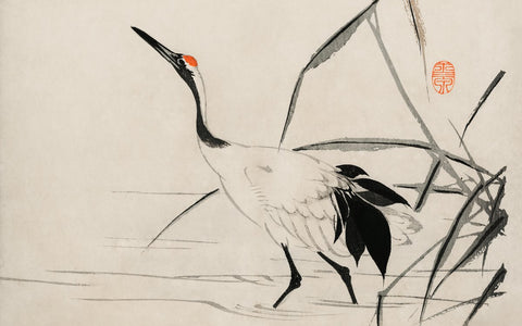 Ukiyo-e illustration of a Japanese Crane by Mochizuki Gyokusen
