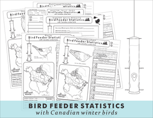 Bird feeder statistics with Canadian winter birds