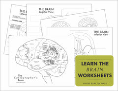 Image of brain worksheets linked to pdf listing
