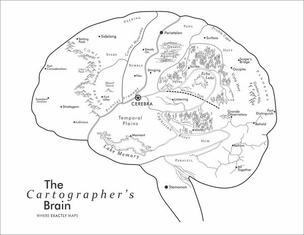 The brain imagined as a map by Where Exactly Maps