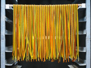 Delicata Squash Flavored Tri Color Linguine