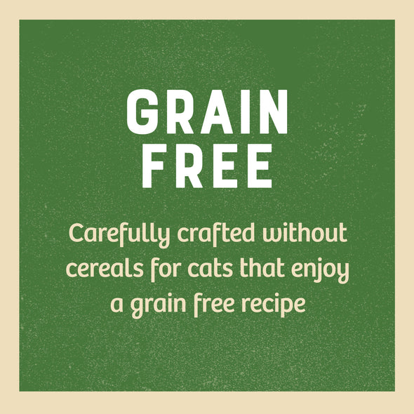 Grain Free Adult Lamb in Gravy Wet Cat Food Pouch