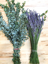 Load image into Gallery viewer, Fresh Eucalyptus and Dried English Lavender BUNDLE for the Shower with Bind Wire - Eucalyptus Growers