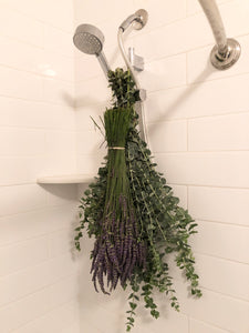 Fresh Eucalyptus and Dried English Lavender BUNDLE for the Shower with Bind Wire - Eucalyptus Growers