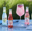 Fever Tree Craft Soda