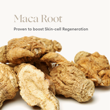 Phytofuse Renew Maca Root Day Cream