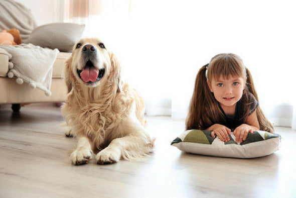 Large dog lays next to a smiling child on the floor in a sunlit room.