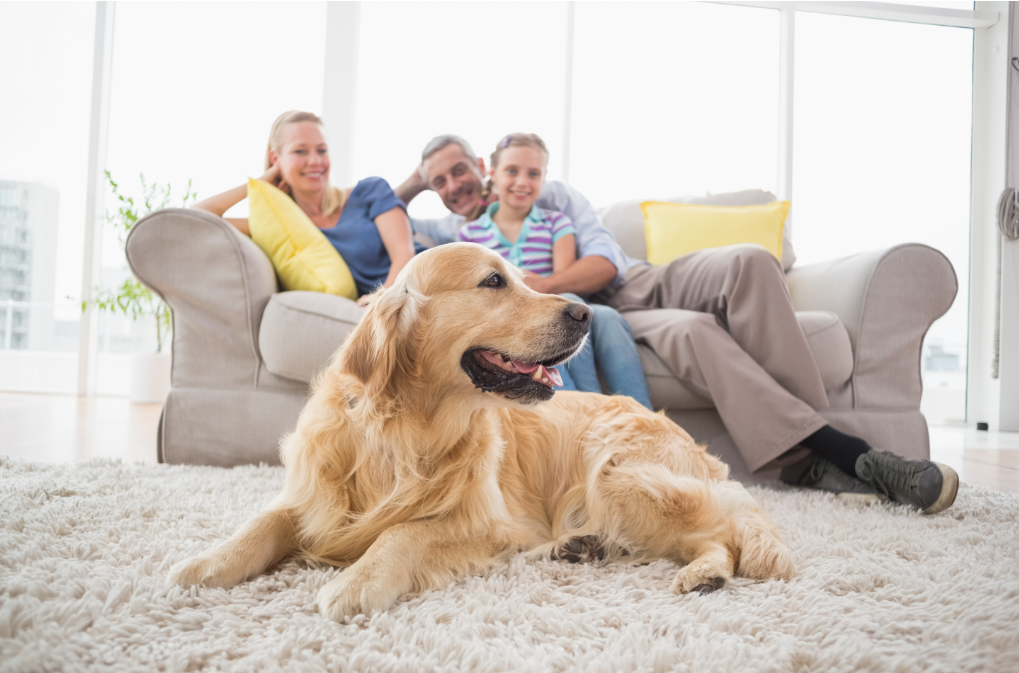 family sitting on a couch with a dog