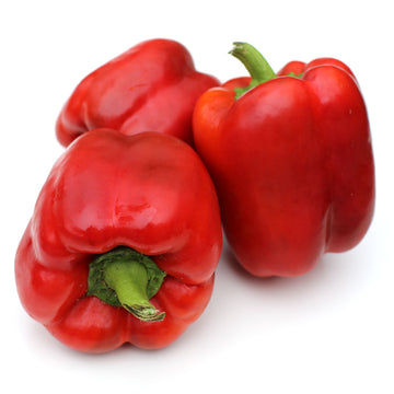 Capsicum Large Red (Each)