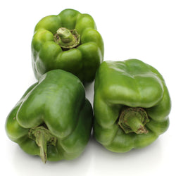 Capsicum Large Green (Each)