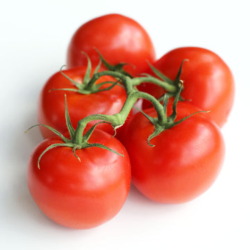 Tomatoes Truss (Each)