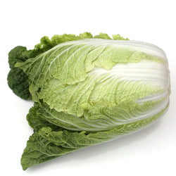 Cabbage Wombok