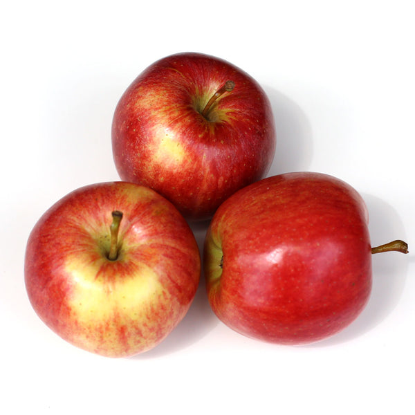 Apples Jazz (Each)
