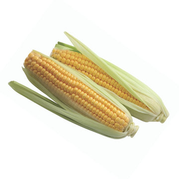 Corn Sweetcorn Twin Pack