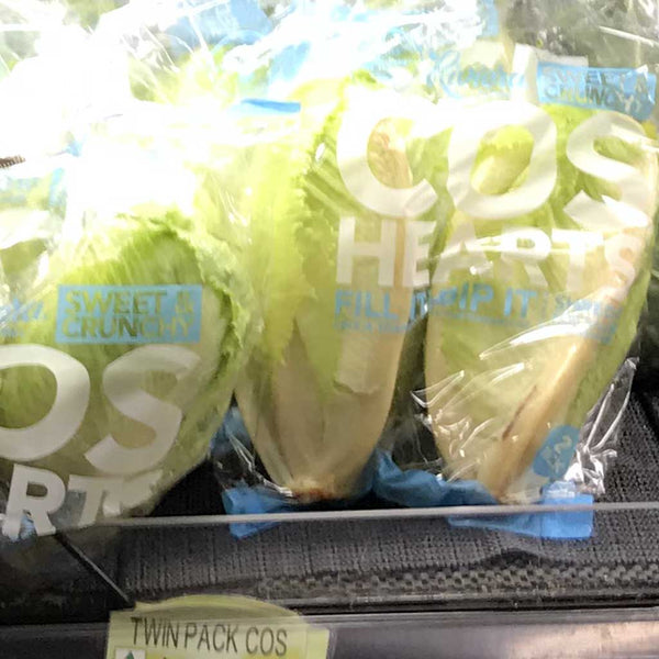 Lettuce Cos Twin Pack (Each)