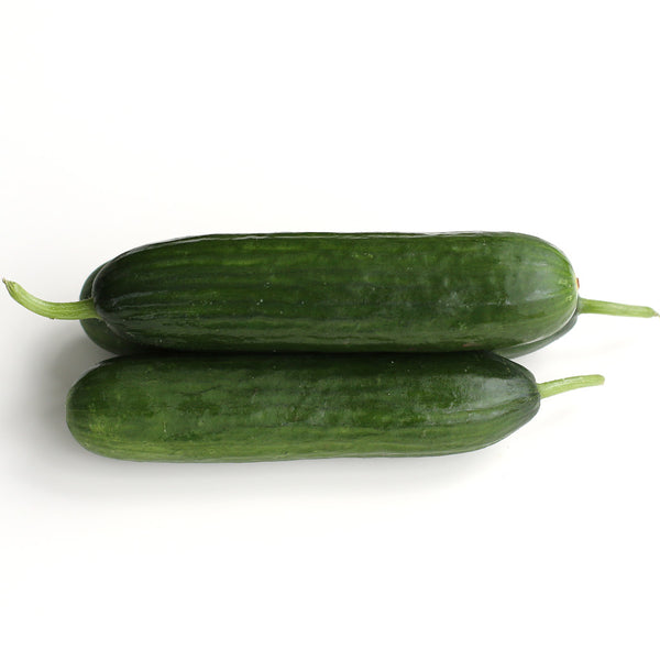 Cucumber Lebanese (Each)